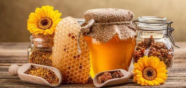 صورة فوائد غذاء الملكات وحبوب اللقاح مع العسل