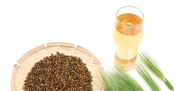 صورة فوائد شراب الشعير