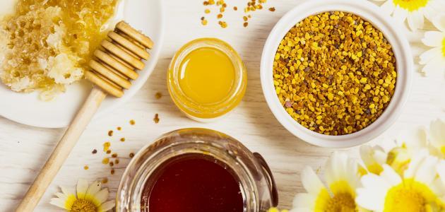 صورة فوائد غذاء ملكات النحل