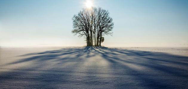 صورة سبعة يظلهم الله في ظله يوم لا ظل إلا ظله