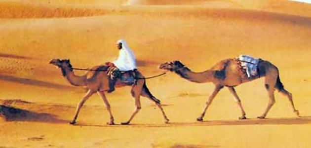 صورة صفات العرب قبل الإسلام