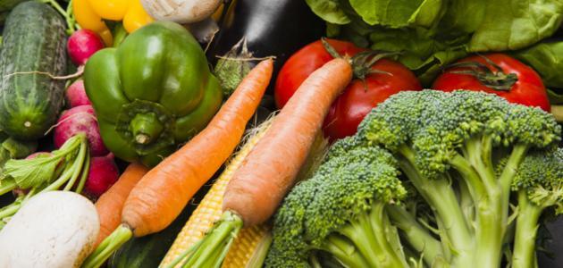 صورة أفضل نظام غذائي للحامل
