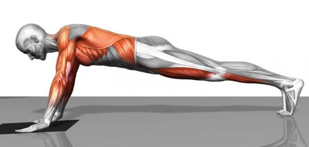 صورة كيف تشد عضلات البطن في أسبوع