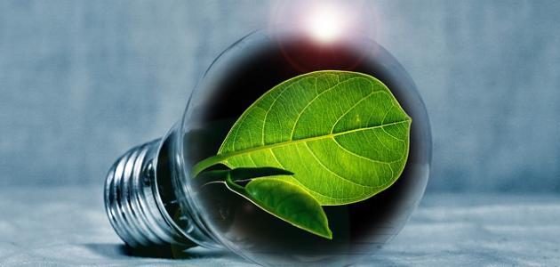 صورة ما هي البيئة المستدامة