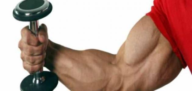 صورة تمارين لعضلة اليد
