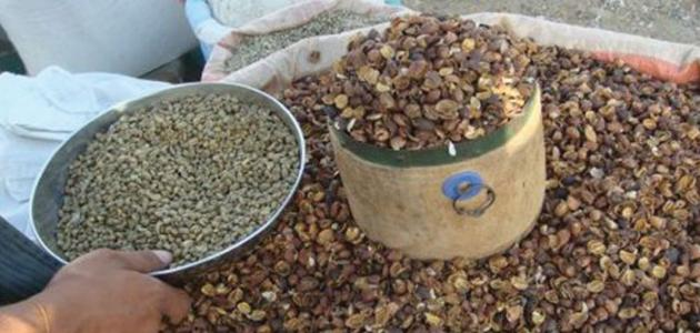 صورة طريقة قشر القهوة للبطن