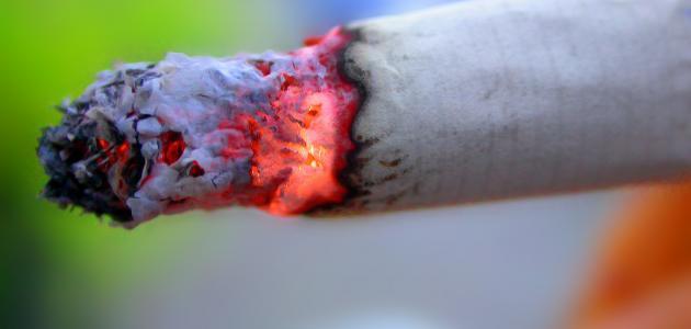 صورة ما هي مكونات الدخان