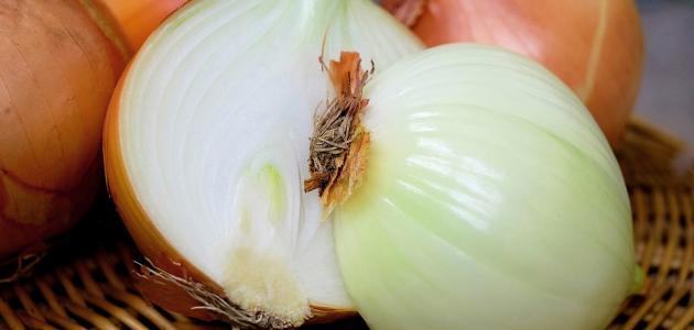 صورة ما هي فوائد البصل للشعر