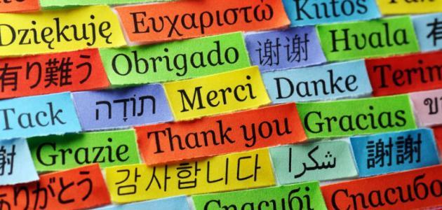 صورة كيف تتعلم اللغات بسرعة
