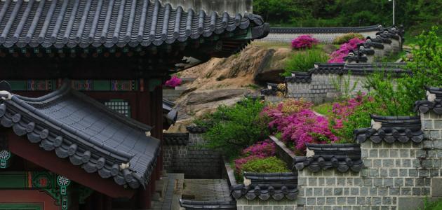 صورة أين تقع كوريا