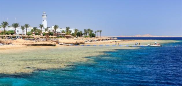صورة أجمل شواطئ شرم الشيخ