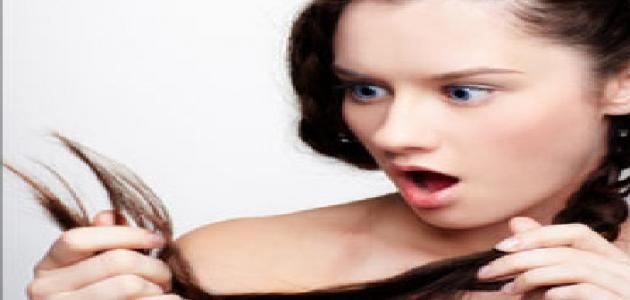 صورة كيفية إزالة تقصف الشعر