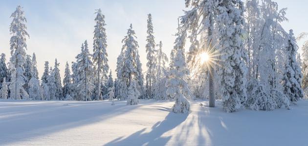 صورة موضوع تعبير عن فصل الشتاء