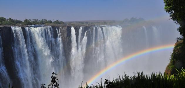 صورة ما هي اللغة الرسمية لزامبيا