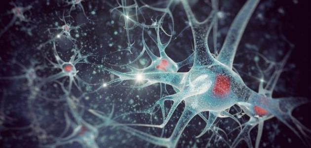 صورة أعراض الاستسقاء الدماغي