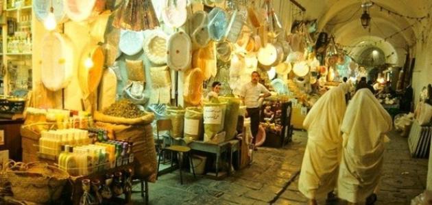 صورة وصف مدينة تونس