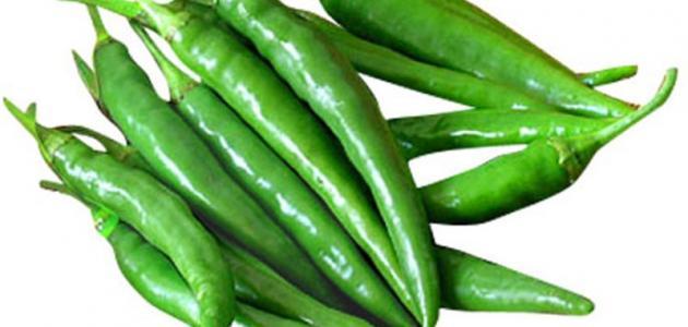 صورة فوائد الفلفل الأخضر وزيت الزيتون للشعر
