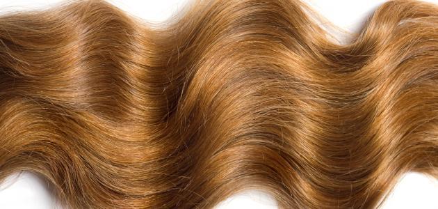 صورة تطويل الشعر في يوم