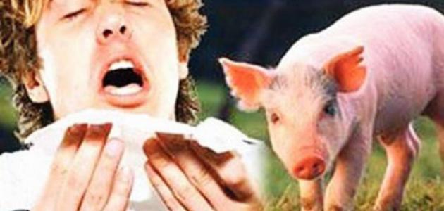 صورة ما هي عوارض انفلونزا الخنزير