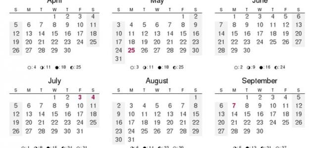 صورة عدد أيام السنة الميلادية