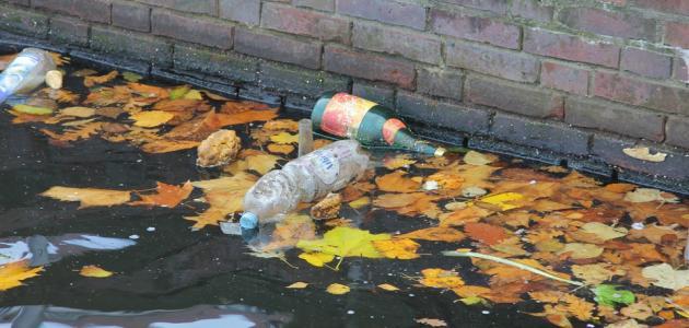 صورة آثار التلوث المائي