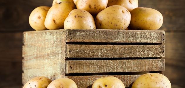 صورة طرق تخزين البطاطس