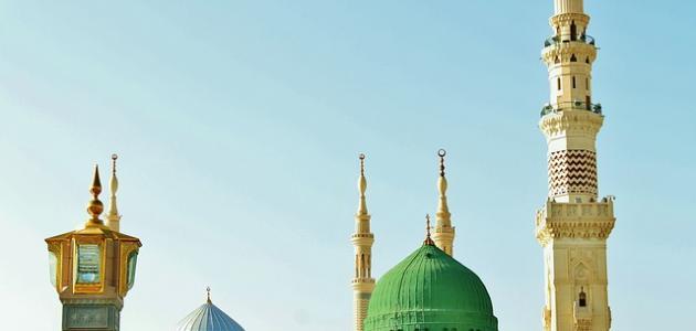 صورة أحمد شوقي لمدح الرسول