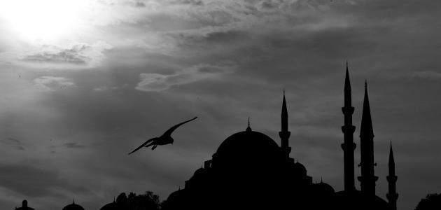 صورة أشعار حسان بن ثابت عن الرسول