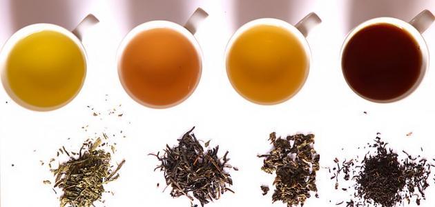 صورة أنواع الشاي في العالم
