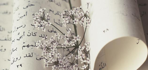 صورة ابيات من الشعر الجاهلي