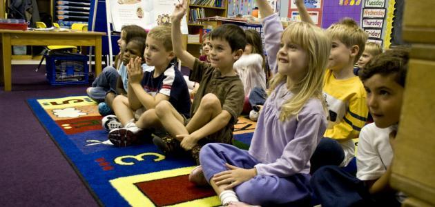 صورة معلومات عن تخصص رياض الأطفال