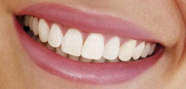 صورة كيف نحافظ على أسناننا