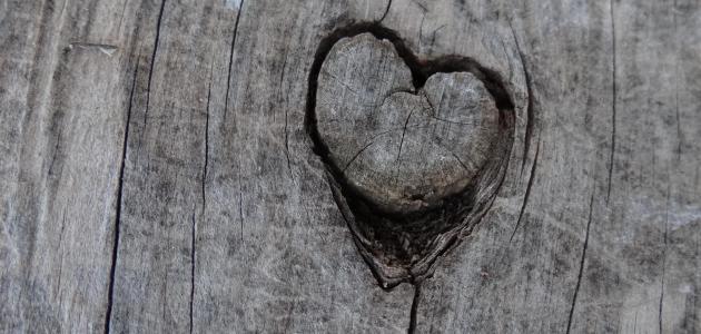 صورة اجمل ما قيل في الحب