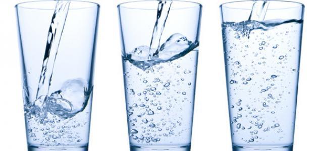 صورة ما هو رجيم المياه