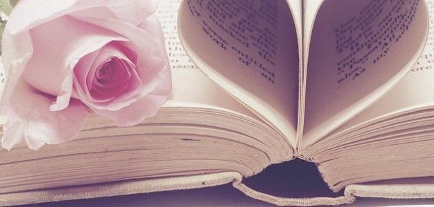 صورة عبارات جميلة وقصيرة عن الحب
