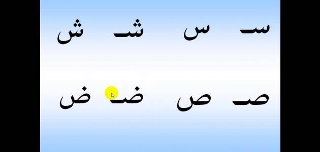 صورة أسهل طريقة لتعلم العربية للمبتدئين