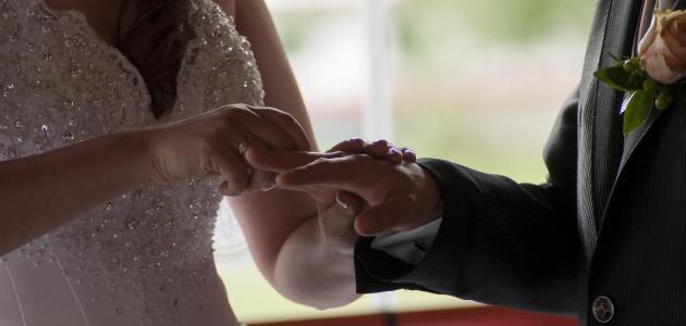 صورة تفسير العرس في الحلم