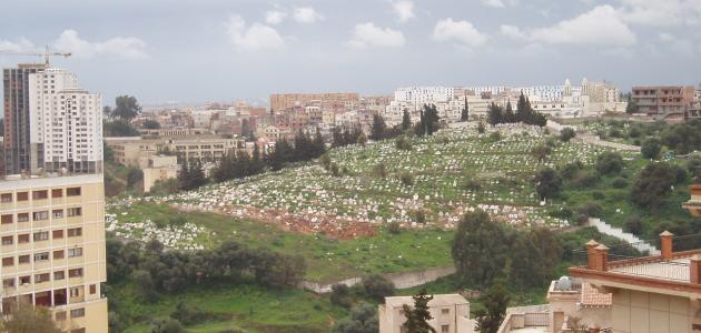صورة مدينة حيدرة