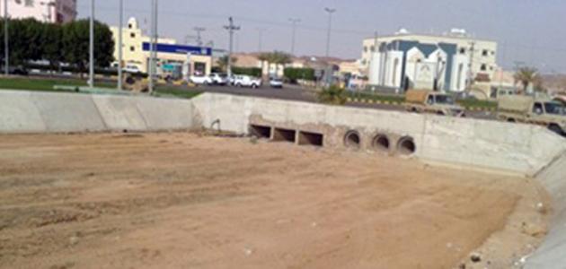 صورة محافظة ضرية