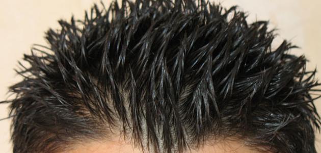 صورة كيف تصنع جل الشعر