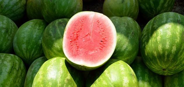 صورة أنواع البطيخ