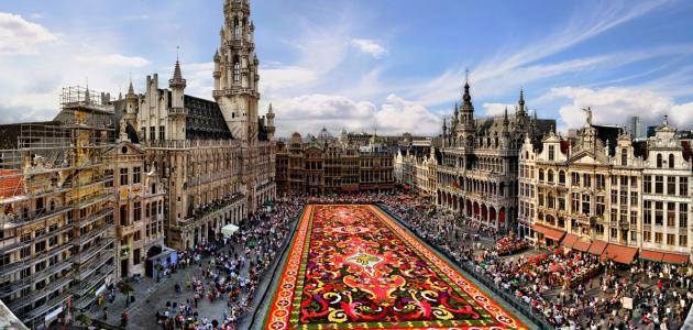 صورة ما هي لغة دولة بلجيكا