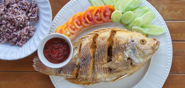 صورة طرق جديدة لعمل السمك البلطي