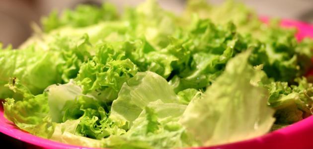 صورة فوائد الخس للبشرة الدهنية