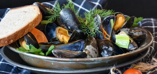 صورة طريقة طبخ بلح البحر المجمد