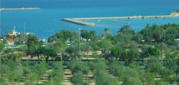 صورة مدينة المرفأ في الإمارات