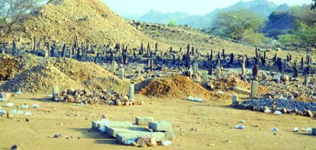صورة مدينة عثر