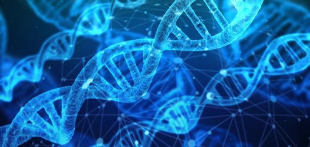 صورة أثر العلم في حياة الإنسان