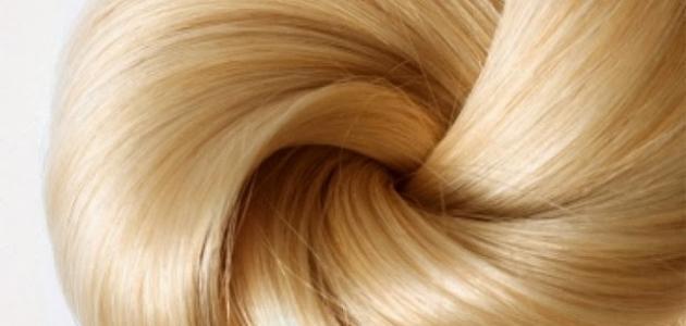 صورة فوائد بروتين الشعر