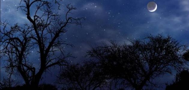 صورة أجمل ما قيل في الليل
